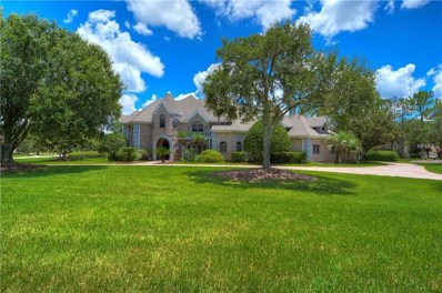 4123 Highland Park Circle, Lutz, FL 33558 - MLS#: T3123884