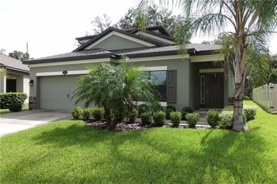 11654 Palmetto Pine Street, Riverview, FL 33569 - MLS#: T3124012
