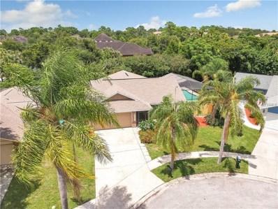 2259 Blue Tern Drive, Palm Harbor, FL 34683 - MLS#: T3124045