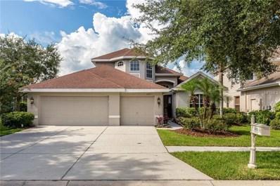 10125 Deercliff Drive, Tampa, FL 33647 - MLS#: T3124181