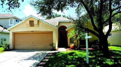 13463 Staghorn Road, Tampa, FL 33626 - MLS#: T3124187