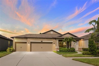 11521 Scarlet Ibis Place, Riverview, FL 33569 - MLS#: T3124189