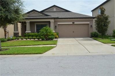 11411 Estuary Preserve Drive, Riverview, FL 33569 - MLS#: T3124405
