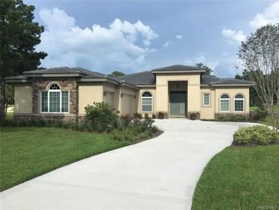3116 W Shadow Creek Loop, Lecanto, FL 34461 - MLS#: T3124406