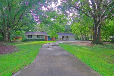 19705 Deer Lake Road, Lutz, FL 33548 - MLS#: T3124778