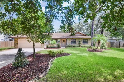 118 Bessemer Circle, Brandon, FL 33511 - MLS#: T3125381