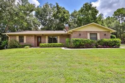 8226 Stoner Woods Drive, Riverview, FL 33569 - MLS#: T3125481