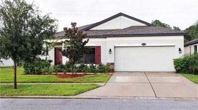 11644 Palmetto Pine Street, Riverview, FL 33569 - MLS#: T3125553