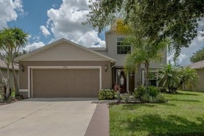 13646 VanDerbilt Road, Odessa, FL 33556 - MLS#: T3125613