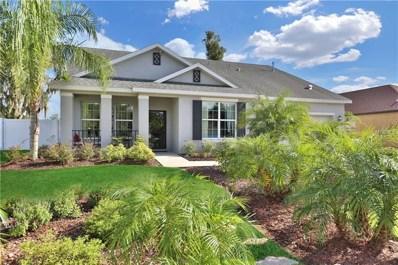 1703 Via Palermo Street, Plant City, FL 33566 - MLS#: T3125754
