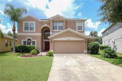 3221 Downan Point Drive, Land O Lakes, FL 34638 - MLS#: T3125780