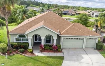 1351 Deerbourne Drive, Wesley Chapel, FL 33543 - MLS#: T3126065