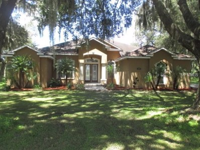 3408 Walden Ridge Place, Dover, FL 33527 - MLS#: T3126366