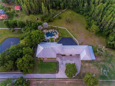 17507 Marsh Road, Lutz, FL 33558 - MLS#: T3126438
