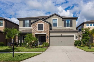 11725 Albatross Lane, Riverview, FL 33569 - MLS#: T3126457