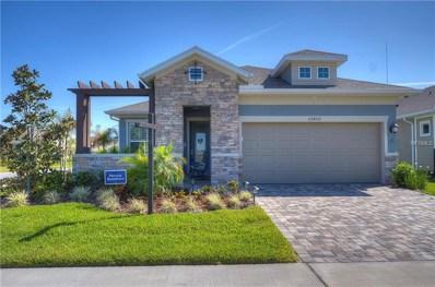 13919 Kingfisher Glen Drive, Lithia, FL 33547 - #: T3126794