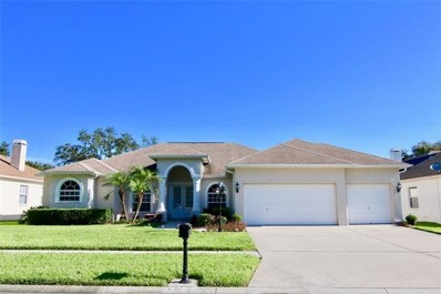 3908 Smoke Rise Court, Valrico, FL 33594 - MLS#: T3126801