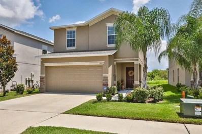 1217 Trailwater Street, Ruskin, FL 33570 - MLS#: T3126887