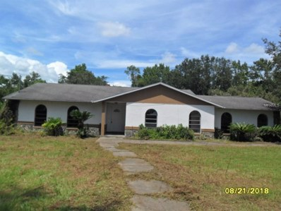 31605 Gude Road, Dade City, FL 33525 - MLS#: T3126923