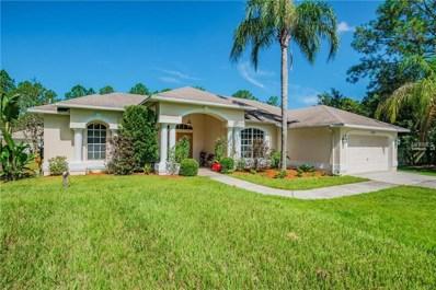 7527 Richland Street, Wesley Chapel, FL 33544 - MLS#: T3127133
