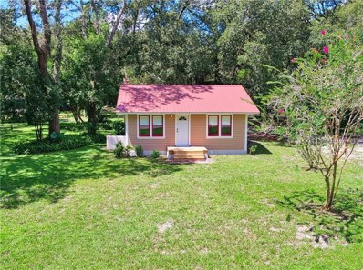 20601 Old Trilby Road, Dade City, FL 33523 - MLS#: T3127351