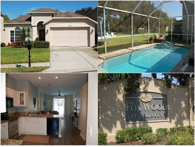 10729 Firebrick Court, Trinity, FL 34655 - MLS#: T3127474