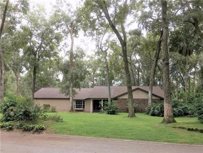 915 River Rapids Avenue, Brandon, FL 33511 - MLS#: T3127727