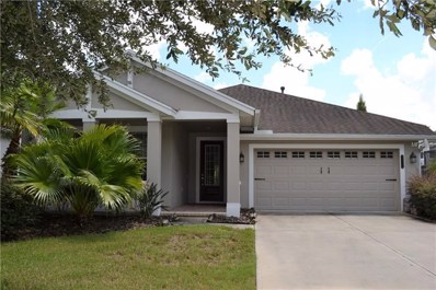 8113 Turkey Hill Court, Tampa, FL 33647 - MLS#: T3127754