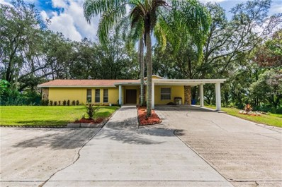 6621 Messer Drive, Seffner, FL 33584 - MLS#: T3128067