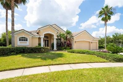 19116 Saint Emilion Court, Lutz, FL 33558 - MLS#: T3128241