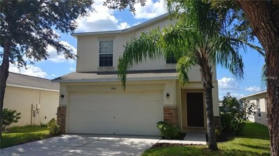 7843 Carriage Pointe Drive, Gibsonton, FL 33534 - #: T3128344