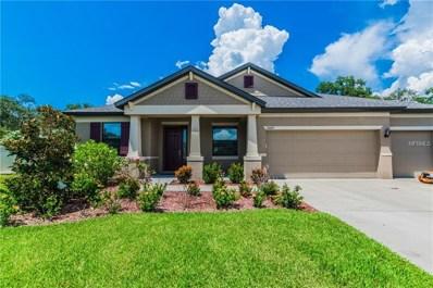 11020 Brahman Ranch Circle, Riverview, FL 33578 - MLS#: T3128605