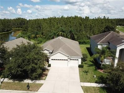 3054 Donington Castle Lane, Land O Lakes, FL 34638 - MLS#: T3128912