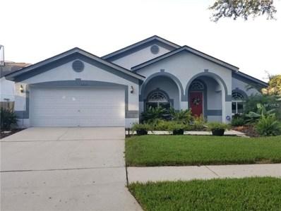 4317 Buckhorn Groves Court, Valrico, FL 33596 - MLS#: T3128937