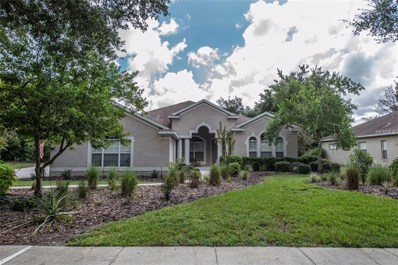 411 Forest Breeze Avenue, Brandon, FL 33511 - #: T3128961