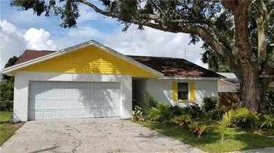 11206 Millridge Drive, Tampa, FL 33625 - #: T3129139