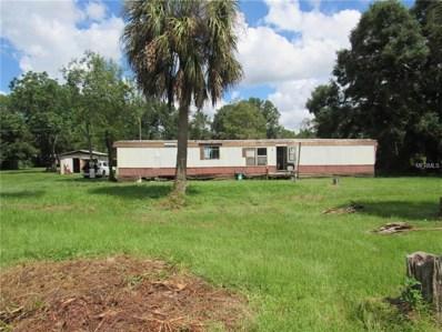 26747 Dayflower Boulevard, Wesley Chapel, FL 33544 - MLS#: T3129203