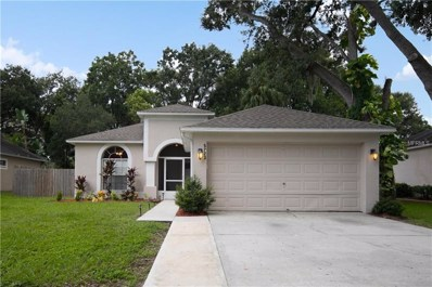 5723 Erhardt Drive, Riverview, FL 33578 - MLS#: T3129205
