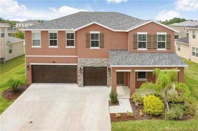 5427 Suncatcher Drive, Wesley Chapel, FL 33545 - MLS#: T3129371