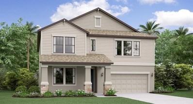 4703 Coachford Drive, Wesley Chapel, FL 33543 - MLS#: T3129773