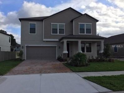 4702 Coachford Drive, Wesley Chapel, FL 33543 - MLS#: T3129778