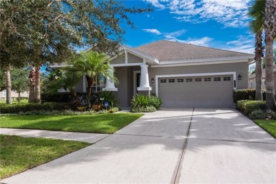 20117 Heritage Point Drive, Tampa, FL 33647 - MLS#: T3129983