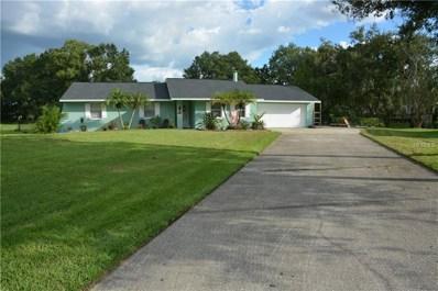 22500 Shoreside Drive, Land O Lakes, FL 34639 - MLS#: T3130030