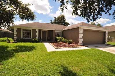 24316 Branchwood Court, Lutz, FL 33559 - #: T3130092