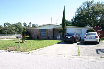2325 E 112TH Avenue, Tampa, FL 33612 - MLS#: T3130291