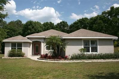 1145 Oxbow Road, Wimauma, FL 33598 - MLS#: T3130293