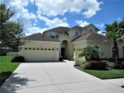 3529 Diamond Falls Circle, Land O Lakes, FL 34638 - MLS#: T3130483