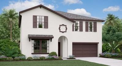 1743 Broad Winged Hawk Drive, Ruskin, FL 33570 - MLS#: T3130487