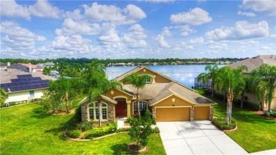 16311 Ivy Lake Drive, Odessa, FL 33556 - MLS#: T3131083