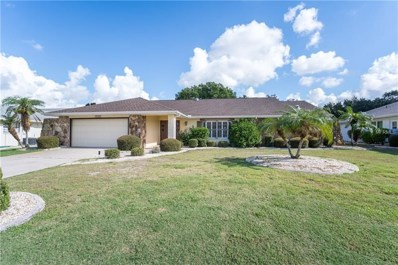 2021 East View Drive, Sun City Center, FL 33573 - MLS#: T3131092